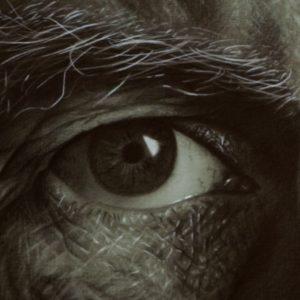 His Masters´ Eyes
